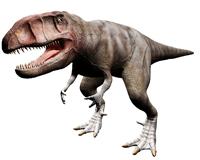 カルカロドントサウルス
